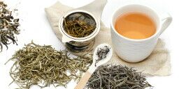 Thé blanc