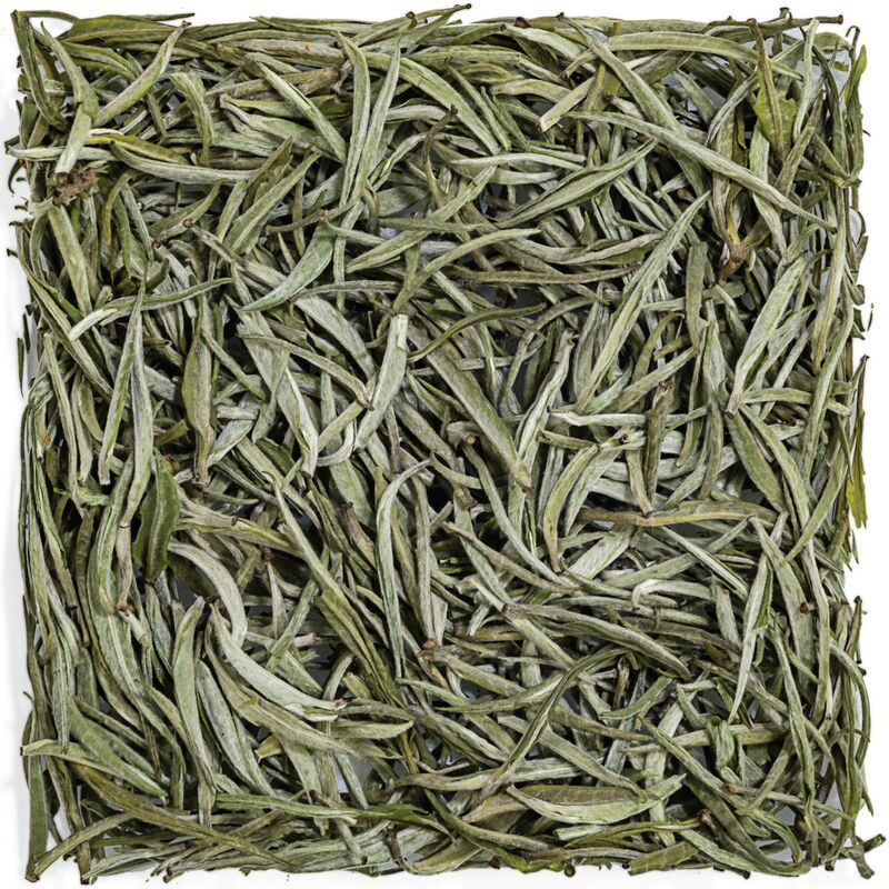Darjeeling Silver Needle